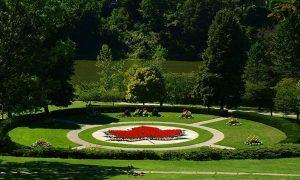 Maple Leaf garden at High Parkÿ