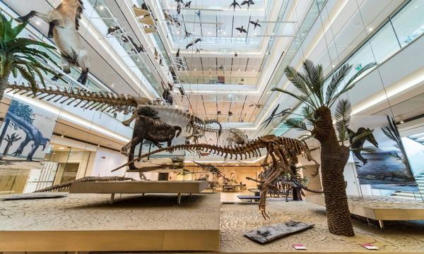 Museo delle scienze di Trento