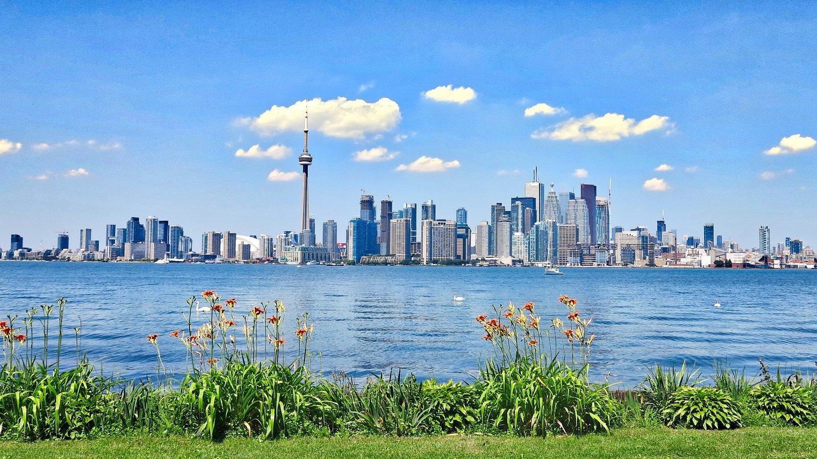 Tour negli Stati Uniti d'America veduta di Toronto