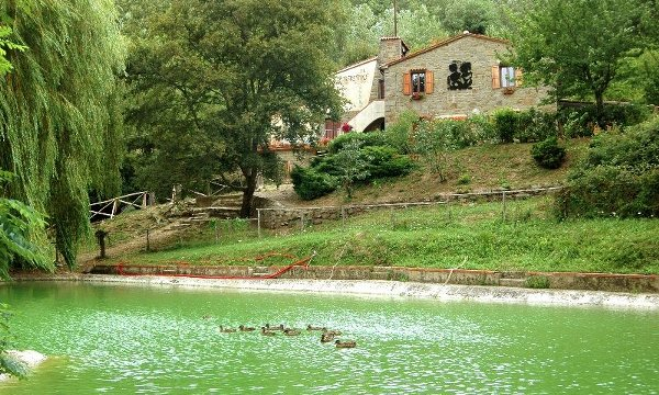 Estate INPSieme in Toscana Vallombrosa