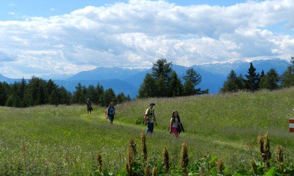 trekking nella Val di Non