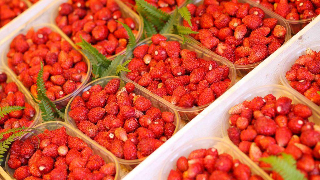 Le tipiche fragoline di bosco di Nemi